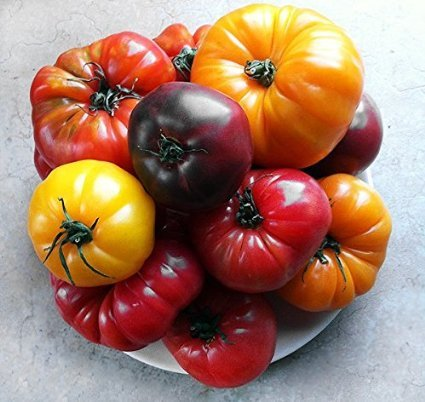 Higarden , Organic Heritage hardy, resistant to heat, rich flavor Fruit Vegetable Seeds, 200 Tomato Seed Mix
