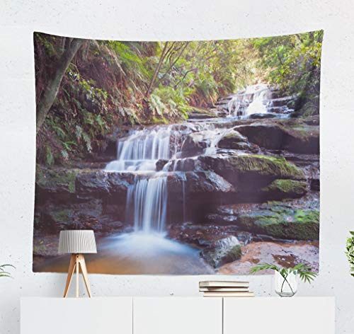 Deronge Blue Tapestry, Blue Mountains Australia Waterfall Sydney Park Tapestry Wall Hanging Decor 50x60 Inch Wall Art Tapestry for Men Bedroom Home Decor Decorative Tapestry Dorm Decor,Blue Mountains (Outdoor Nsw Furniture)
