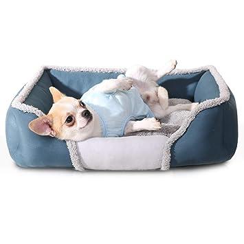 zhenghewyh Cama para Perros Gato Cesta Mascotas Pequeña Medio Grande Lavable (M, Azul)