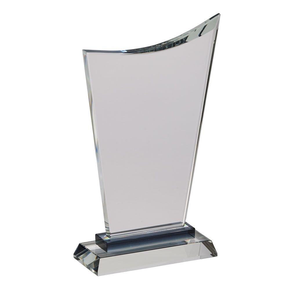 Medium Wave Trophy 10.25'' H with Black Highlight on Black