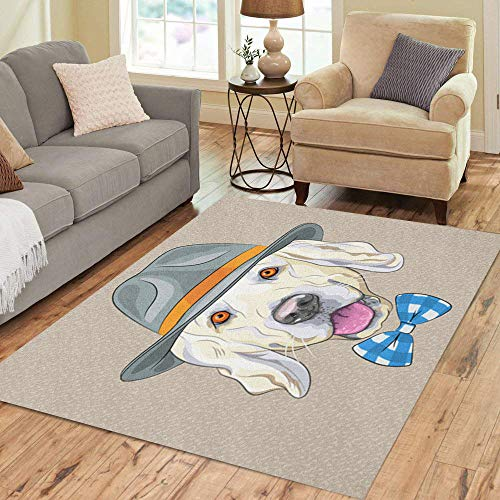 Semtomn Area Rug 5' X 7' Hipster Dog Golden Retriever Breed in Gray Hat Home Decor Collection Floor Rugs Carpet for Living Room Bedroom Dining Room
