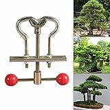 Professional Bonsai Tools Trees Branch Modulator Trunk Lopper Regulator Tool Garden Supplies