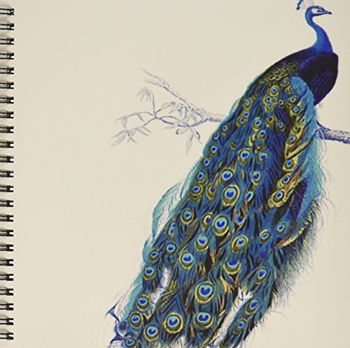 3dRose db_113188_1 Vintage Peacock Art-Blue and Green Bird on Branch Beautiful Tail Feathers-White-Drawing Book, 8 by 8-Inch