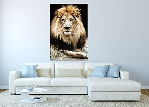 LightFairy Glow in The Dark Canvas Painting - Stretched and Framed Giclee  Wall Art Print - Animals Nature Old Lion - Master Bedroom Living Room Decor