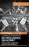 Comment tirer profit de l'intelligence collective ?: Pratiques de management et dynamiques d'équipe