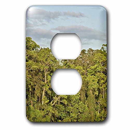 KIKE CALVO Rainforest Costa Rica Collection - Tortuguero National Park - Light Switch Covers - 2 plug outlet cover (lsp_234120_6) (Tortuguero Park National)