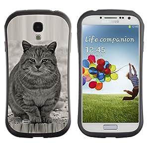 Suave TPU GEL Carcasa Funda Silicona Blando Estuche Caso de protección (para) Samsung Galaxy S4 I9500 / CECELL Phone case / / Cute Fat Cat Grey White Furry Beast /
