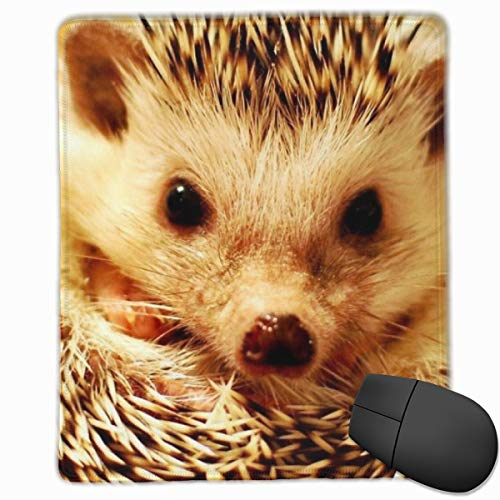 Kjiurhfyheuij Portable Gaming Mouse Pad Hedgehog Comfortable Non-Slip Base Durable Stitched Edges for Laptop Computer & PC 7.08 X 8.66 Inch, 3mm Thick