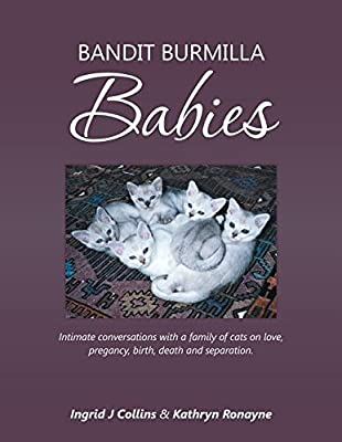 Bandit Burmilla Babies: Intimate Conversations with a Family of Cats on Love, Pregancy, Birth, Death and Separation.