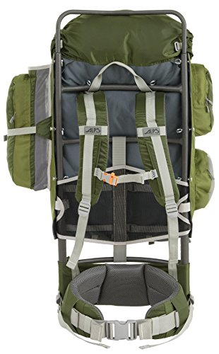 Amazon.com : ALPS Mountaineering Zion 3900 Cubic Inches External ...
