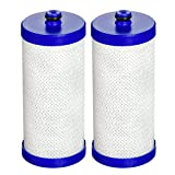 Water Filter Frigidaire EcoAqua EFF- WF1CB Replacement for Electrolux, Sears, Frigidaire WF1CB, WFCB, RG100, NGRG2000, Kenmore 9910 Refrigerator Water Filter, 2 Pack