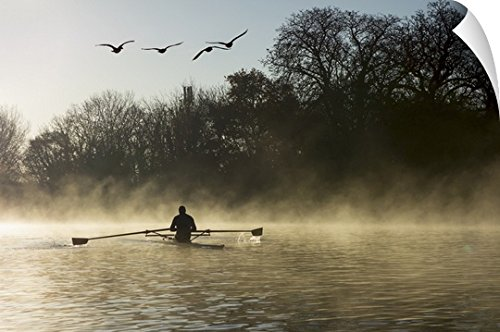 Charles Bowman Wall Peel Wall Art Print entitled Sculling in mist on River Thames, London, England (Capital 48 Inch Natural)
