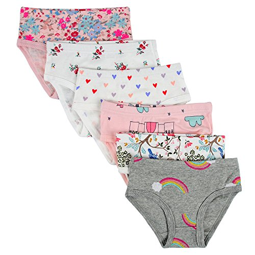 Closecret Kids Series Baby Soft Cotton Panties Little Girls' Assorted Briefs(Pack of 6) (4-5 Years, Style6)