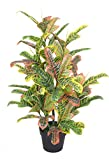 AMERIQUE Gorgeous 4.5 Feet Tropical Codiaeum Artificial Silk Plant with UV Protection, Feel Real Technology, Super Quality