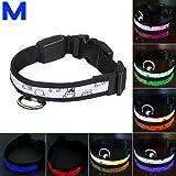 KingMas Nylon Multicolour LED Dog Pet Flashing Light Up Safety Collar M