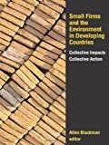 Small Firms and the Environment in Developing Countries : Collective Impacts, Collective Action, , 1933115289
