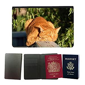 Couverture de passeport // M00108111 Gato Gato Rojo Hangover gato Cabeza // Universal passport leather cover