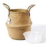 POTEY 710101 Seagrass Plant Basket - Hand Woven
