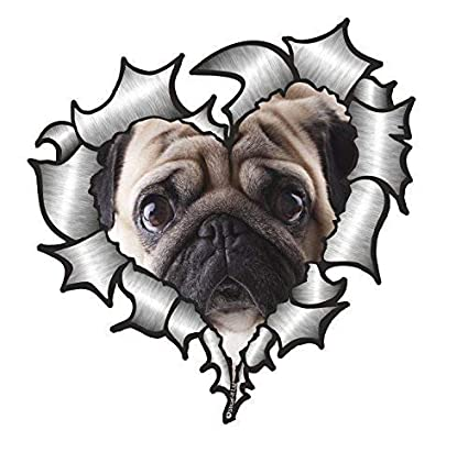 Sticar-It Ltd en Forma de Corazón Rasgado Metálico Pegatina de Coche Perro Pug Mascota
