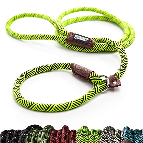 (Friends Forever Extremely Durable Dog Slip Rope Leash Premium Quality Mountain Climbing Lead Strong Sturdy Support Pull for Large and Medium Sized Pet 6 feet Green )
