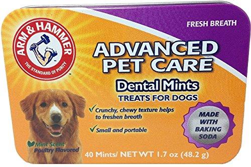 Arm & Hammer Advanced Pet Care Dental Mints Poultry Flavor Treats For Dogs 1.7oz 40 per tin