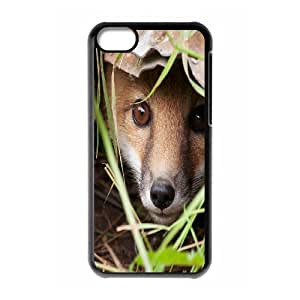 Sly Fox New Printed Case for Iphone 5C, Unique Design Sly Fox Case