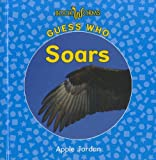 Guess Who Soars, Apple Jordan, 1608704297