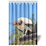 CTIGERS Animal Shower Curtain for Kids The Big Vultures Polyester Fabric Bathroom Decoration 48 x 72 Inch