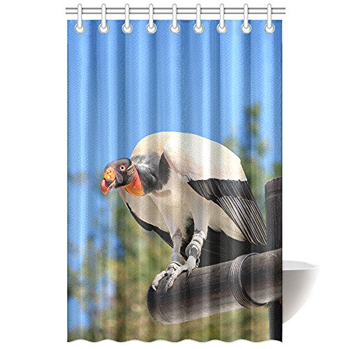 CTIGERS Animal Shower Curtain for Kids The Big Vultures Polyester Fabric Bathroom Decoration 48 x 72 Inch by CTIGERS