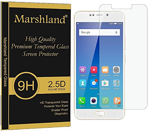 Marshland? Tempered Glass 2.5D Round Edge Full Screen Protector for Gionee X1  Transparent