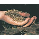 CANADA GREEN GRASS SEED BAG