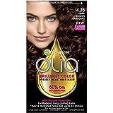 Facial Hair Color - Garnier Olia Hair Color, 4.35 Dark Gold Mahogany, Ammonia Free Brown Hair Dye (Packaging May Vary)