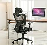 Anji Modern Furniture Ergonomic High Back Swivel Mesh Office Desk Computer Chair with Lumbar Support and Headrest  Black