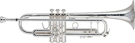 Bach 19037 Stradivarius serie 50º Aniversario BB Trompeta 190s37 plata: Amazon.es: Instrumentos musicales