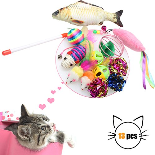 Cat Toys Assortments Set of 13-Interactive Cat Teaser Wand Cat Scratching Toys Cat Ball Toys Organic Catnip Mouse Fish toys for (Catnip Filled Ball Pillows)