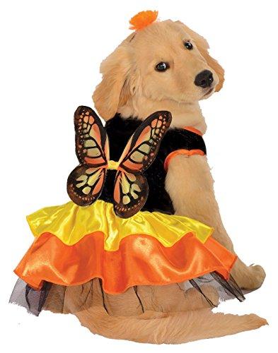 Rubie's Pet Costume, Medium, Monarch (Butterfly Pet Costumes)