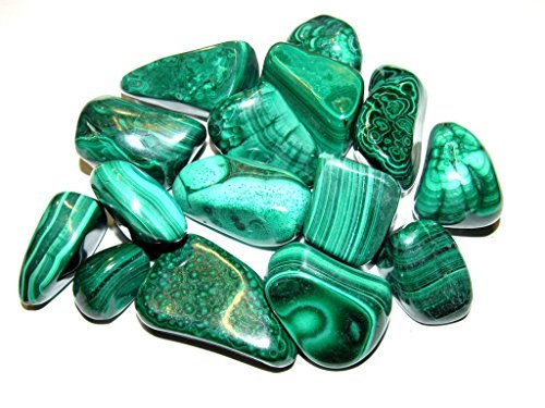 ection: 1/2 Pound Natural Large Tumbled Green Malachite- Polished Authentic Wholesale Gemstones for Healing, Wicca, Reiki ()