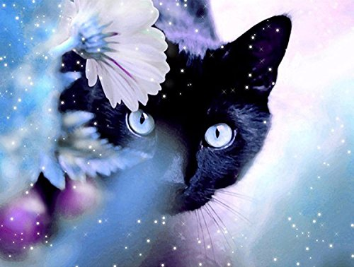 21secret 5D Diamond Diy Painting Full Drill Handmade Elegant Flower And Black Cat Cross Stitch Home Decor Embroidery Kit (Cat Stitch Black Cross)