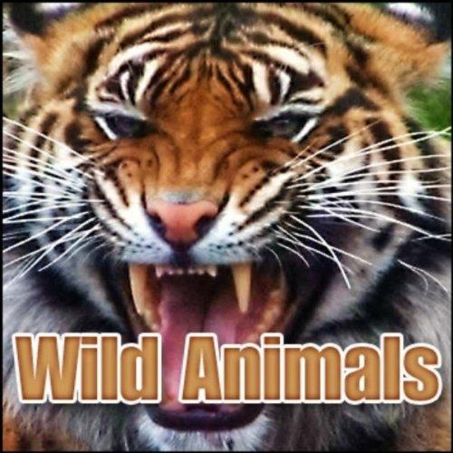 Wild Animals: Sound Effects