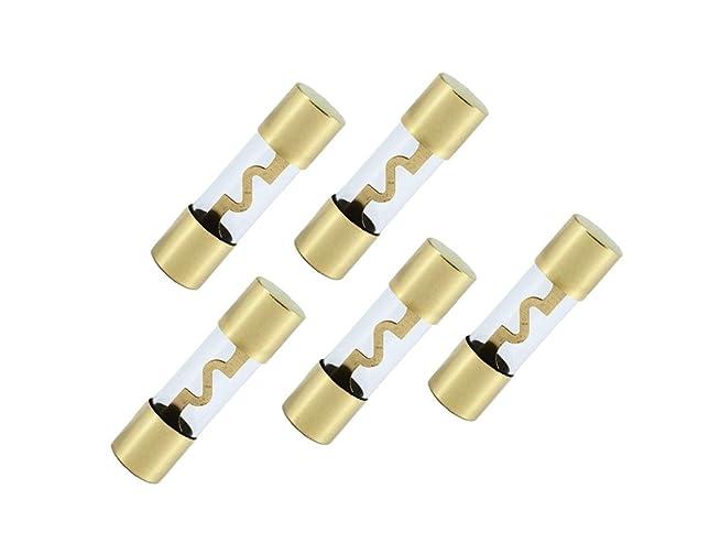 513pfLS4s1L._SX644_ amazon com ds18 agu 80a 5pk 80 ampere fuse (5 pack) car electronics