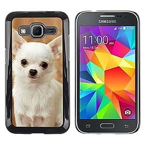 TopCaseStore / la caja del caucho duro de la cubierta de protección de la piel - Happy White Chihuahua Dog Small - Samsung Galaxy Core Prime SM-G360