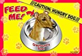 Greyhound 17'' x 11-1/2'' 2-Sided Placemat / Dishmat