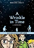 Book cover from A Wrinkle in Time: The Graphic Novel by Madeleine LEngle