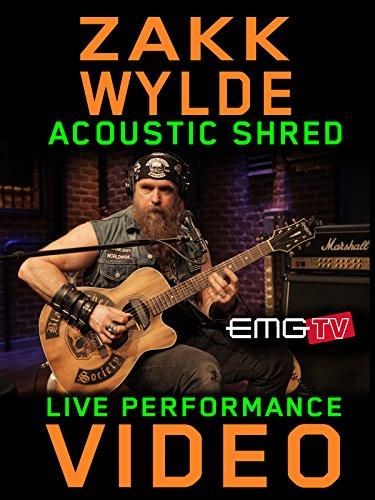 Zakk Wylde Solos - Zakk Wylde - Acoustic Shred - EMGtv Live Performance