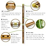 G Key Dizi Bitter Bamboo Flute for Beginners with