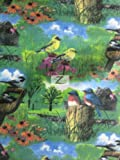 "GARDEN BIRD POLAR FLEECE FABRIC - Beautiful Garden Bird - 60"" WIDTH SOLD BY THE YARD (703)"