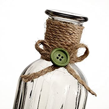 V-More Small Vintage Glass Bottle Flower Bud Vase with Jute Rope For Home Decor Wedding Party Celebration (2, Transparent Grey)