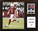 NFL Arizona Cardinals Carson Palmer Player Plaque, 12 x 15-Inch