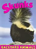 Skunks, Annalise Bekkering, 1590366867