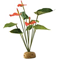Exo Terra PT 2992 Anthurium Bush